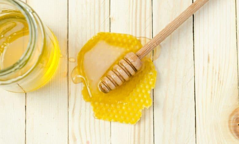 العسل للقطط