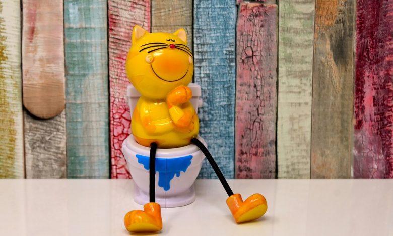 تعليم قطتك إستخدام المرحاض